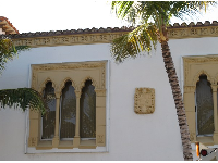 Palm and gothic windows.