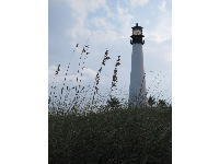 The lighthouse and sea oats.