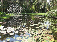 Cube by Frabel reflects on the surface of the lily pond.