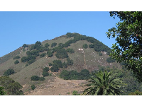 M Mountain, as seen from Santa Rosa Park in San Luis Obispo.