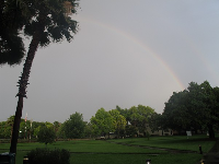 Rainbow on campus.