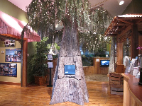 Tree that welcomes you to the River Center.