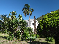 Manoa house and garden.