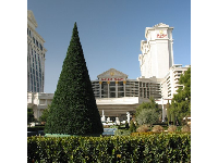 Stroll past Caesar Palace, as you walk down The Strip.