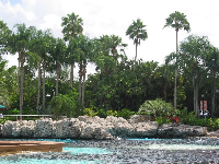 Tropical lagoon at Dolphin Cove- reminded me of the Big Island of Hawaii!