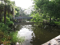 View of the peaceful bayou from the stone bridge.