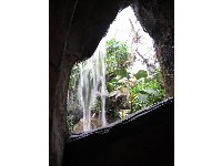 Cave and waterfall, inside the Conservatory.