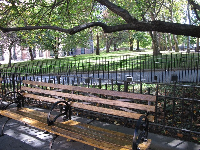 Bench and lawn with trees, in the area outside the Grand Gallery.