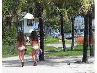 Pretty young women walking under the palm trees.