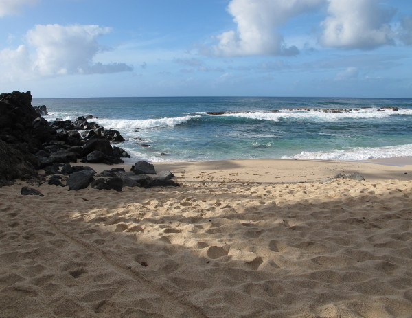 Three Tables Beach, North Shore, Oahu Hawaii