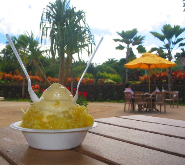 Dole Plantation, Oahu Hawaii