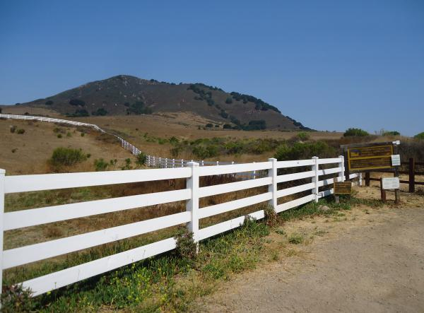 Lemon Grove Loop Trail, SLO, San Luis Obispo California