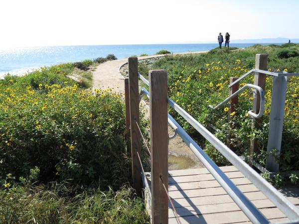 Labyrinth Trail, UCSB , Santa Barbara California
