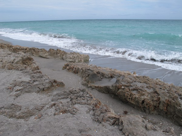 Blowing Rocks Preserve, Jupiter Island, Palm Beach FL