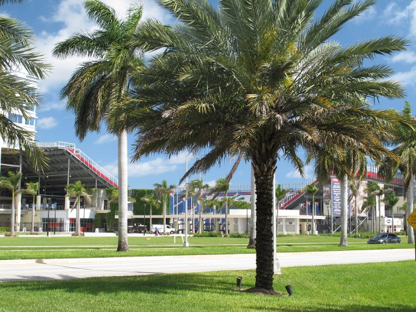 Florida Atlantic University, Boca Raton, Palm Beach FL
