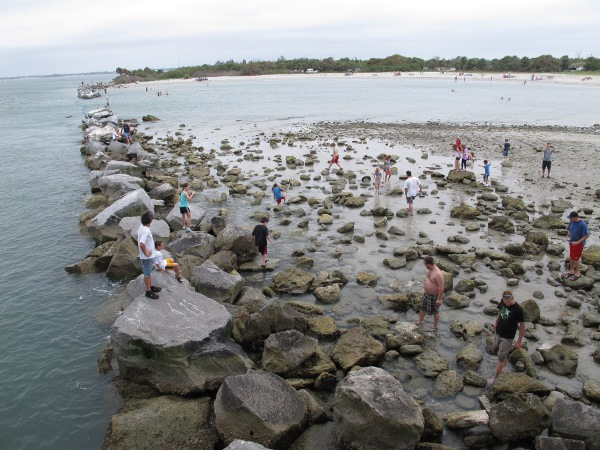 Sebastian Inlet Rock Pools, Stuart FL